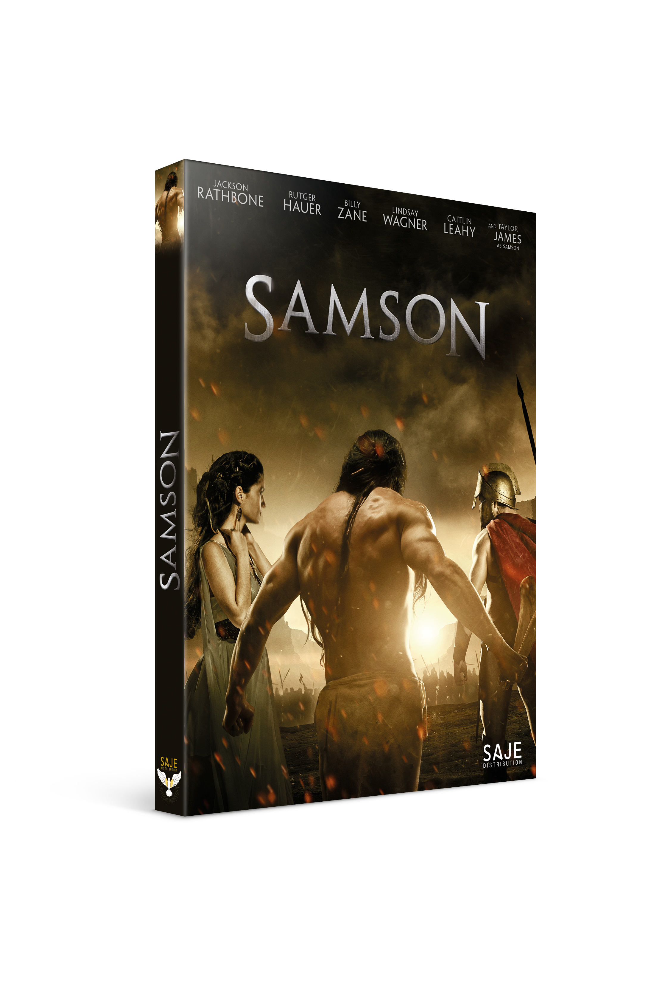 samson-3d-dvd