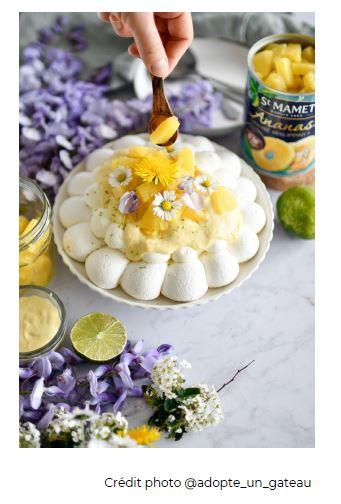 pavlova-ananas