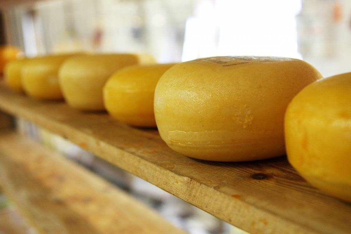 media-degustation-initier-fromage-palais