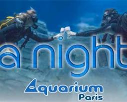 L'aquarium de Paris by night  une expérience insolite
